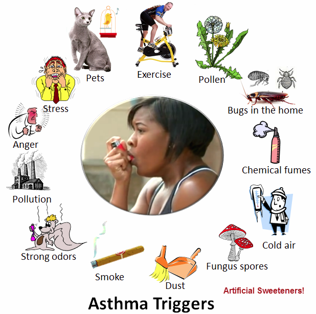 So Maybe All of Those Antibiotics Caused My Asthma!